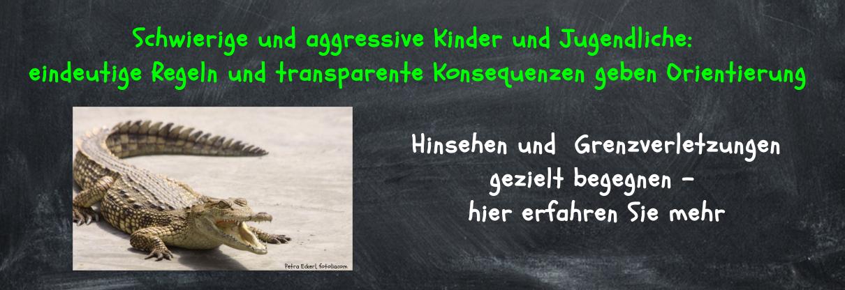 Aggressive-Kinder-Jugendliche