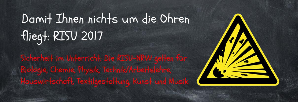 RISU-NRW 2017